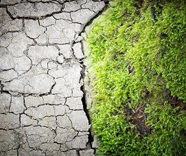אפיון תנאי סביבה